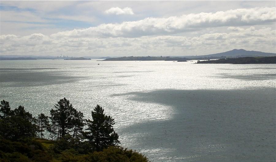 Te Whau's silver view.