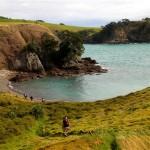 Walk Waiheke