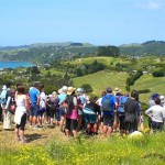 Waiheke Walking Festival for 2013