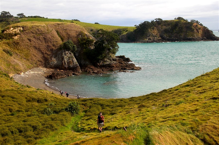 Oneroa to Owhanake to Matiatia Headland Walk. You can do this walk straight off the ferry at low tide.